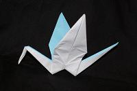 origami birds cranes