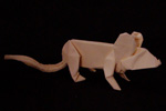 origami animals rat mouse