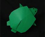 origami animals turtle tortoise