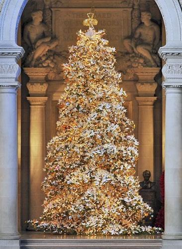 World Tree of Hope