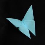 Yoshizawa butterfly variation