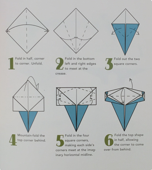 Origami Shapes LaFosse