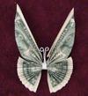 dollar bill butterfly